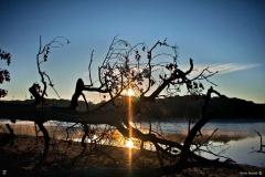Le lac du Lampy