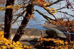 Autour du lac du Lampy